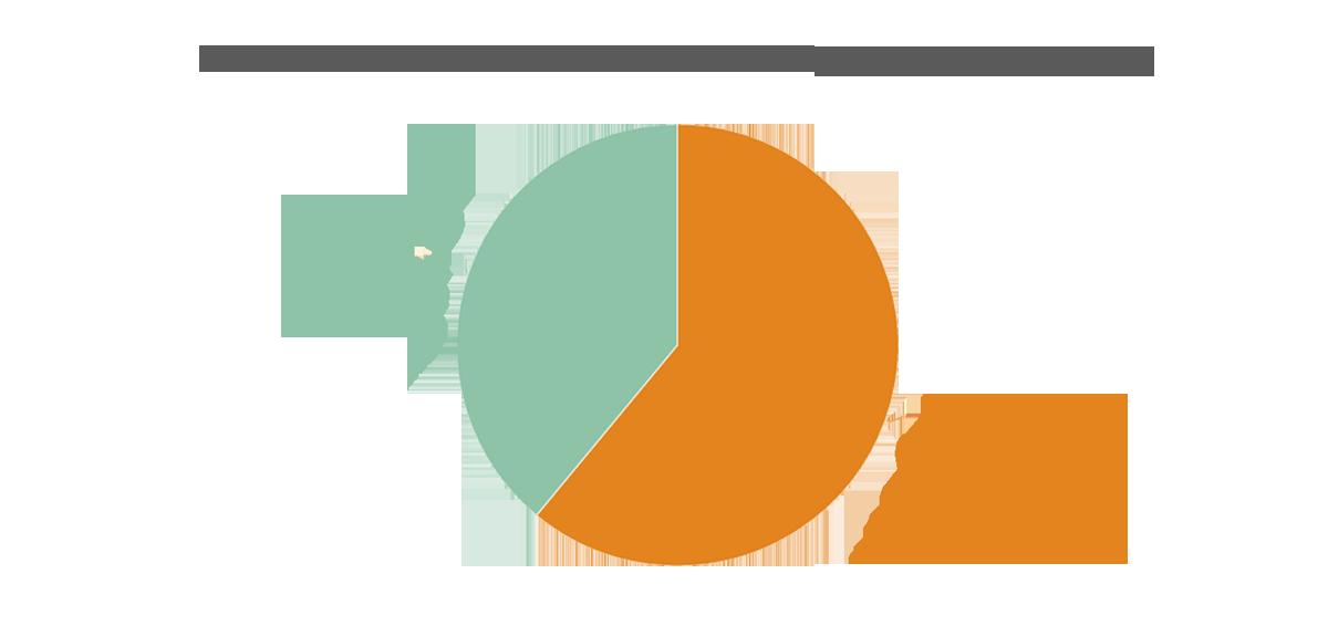 infografia livechat españa blog